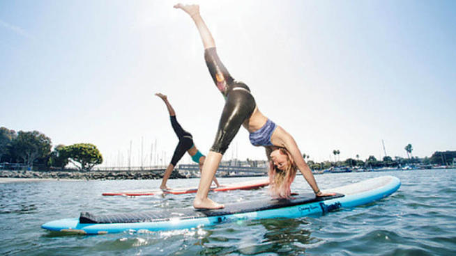 Teaching Your Dog To Paddle Board