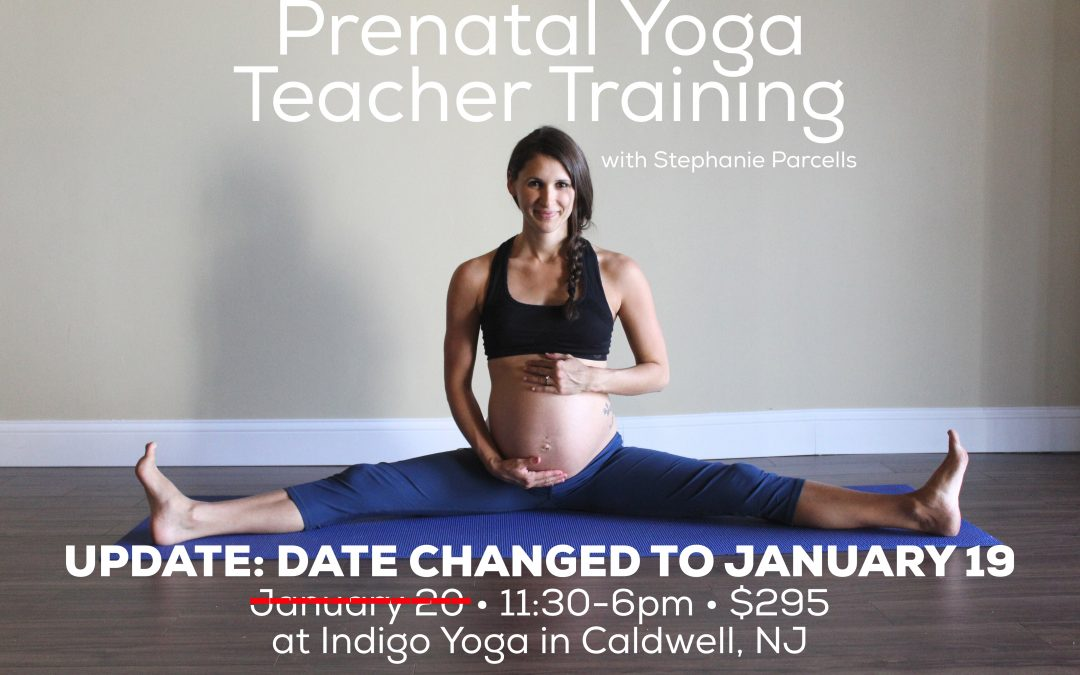 Prenatal Yoga Teacher Training, 1/19, Indigo Yoga, 351 Bloomfield Avenue, Caldwell