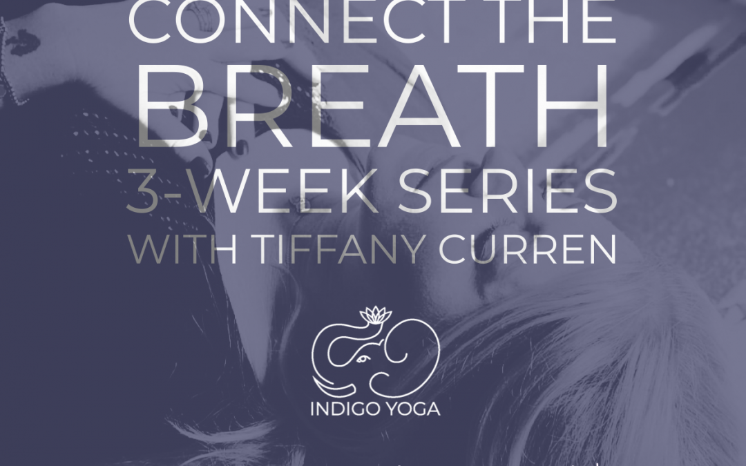 Connect to The Breath, 3-Week Series at 351 Bloomfield Avenue, Caldwell
