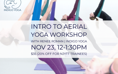 Intro to Aerial Yoga Workshop  with Renee Roman