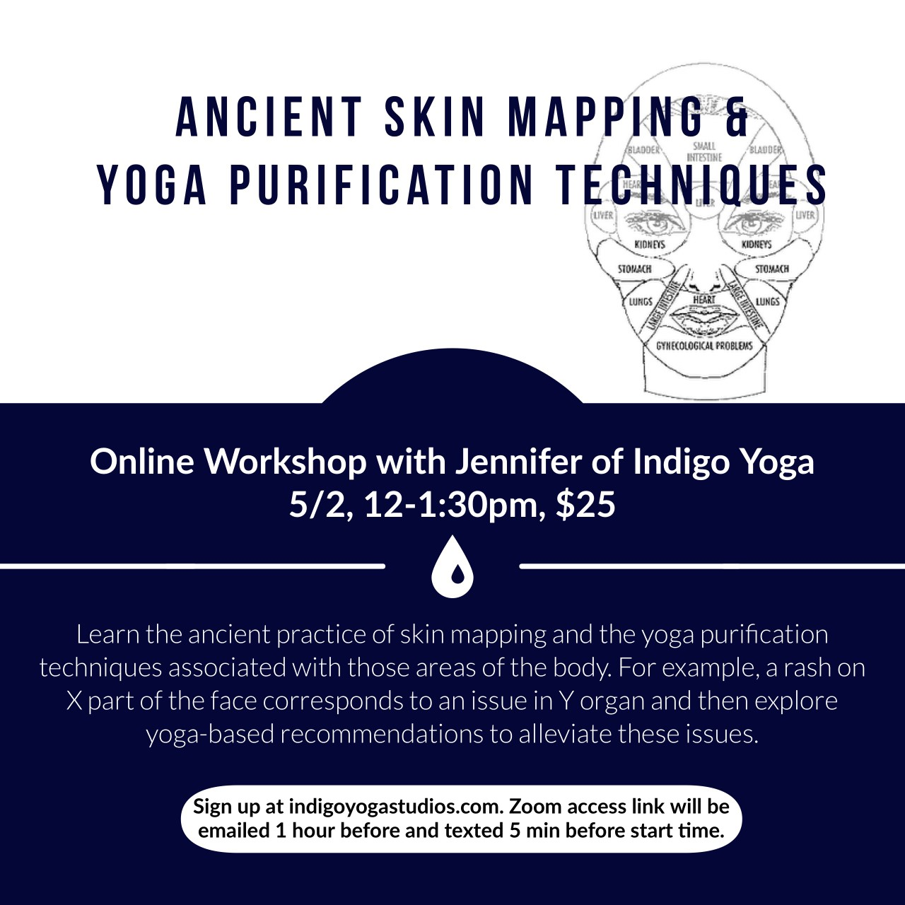 The Ancient Practice Of Skin Mapping And Yoga Purification Techniques Online Workshop With Jennifer Gabel Indigo Yoga Studios