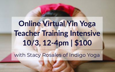 Online Virtual Yin Yoga Teacher Training Intensive with Stacy Rosales