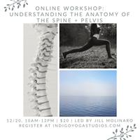 Online Workshop: Understanding the Anatomy of the Spine and Pelvis with Jill Molinaro